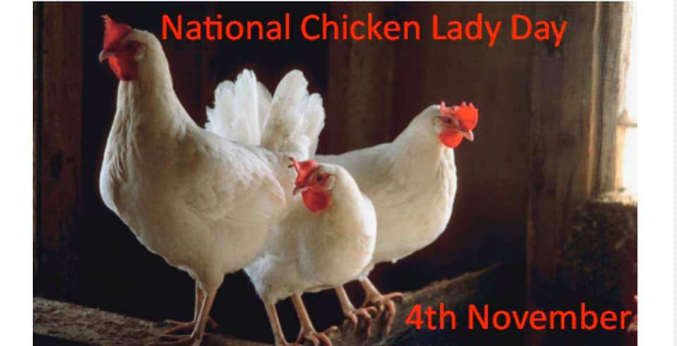 National Chicken Lady Day Wishes Sweet Images