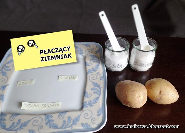 http://inaisewa.blogspot.com/2016/11/paczacy-ziemniak-piatki-z-eksperymentami.html