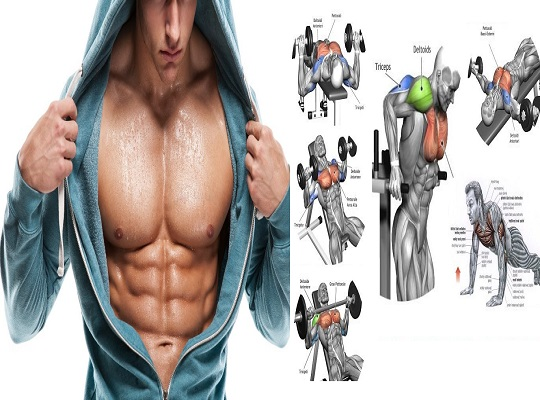 Chest best Workouts For Beginning Bodybuilders | Chest Workout