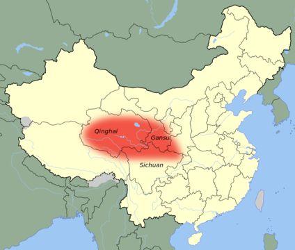 Gato Chinês da Montanha (Felis bieti)