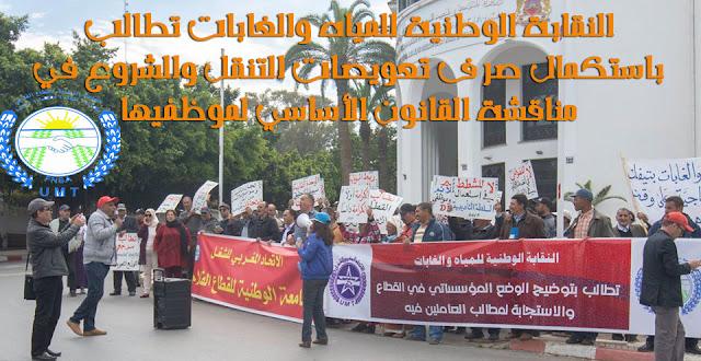 وقفة احتجاجية للنقابة الوطنية للمياه والغابات