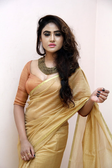 Telugu Hot Actress Sony Charishta latest Photos In Golden Brown Saree and Blouse Exposing Cleavage