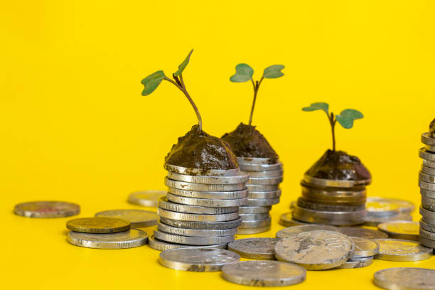 Menimbang Keuntungan antara Investasi Jangka Pendek atau Investasi Jangka Panjang