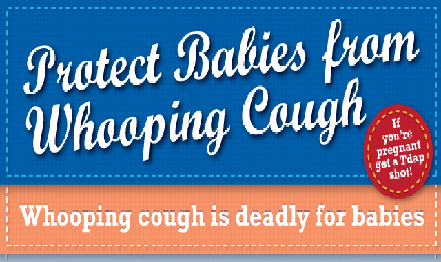 Protect Babies from Whooping Cough #infographic