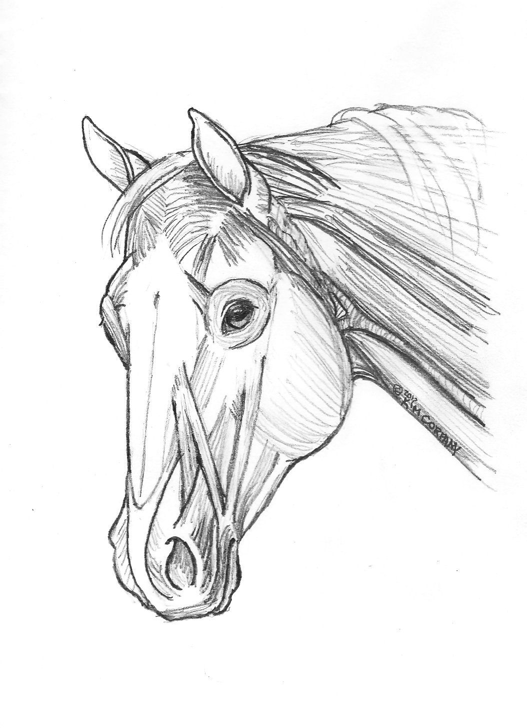 Bronze horse statues, horse art & the real horse: Studying the ...
