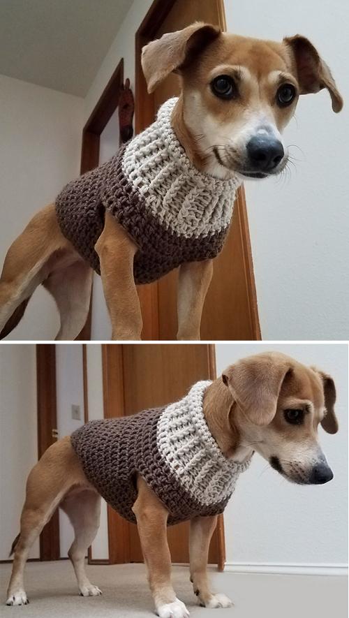 Earhart Dog Sweater - Crochet Pattern