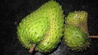 fruit around the world, strange fruit, strange fruit around the world, crazy fruit, crazy fruit around the world, SOURSOP