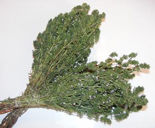 cimbru uscat pentru iarna reteta de casa cimbrisor condimente plante aromatice medicinale retete conservare,