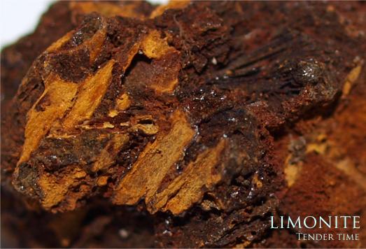褐鉄鉱 リモナイト limonite 福島県信夫郡(シノブグン)吾妻(アズマ)産出(現在の福島市)
