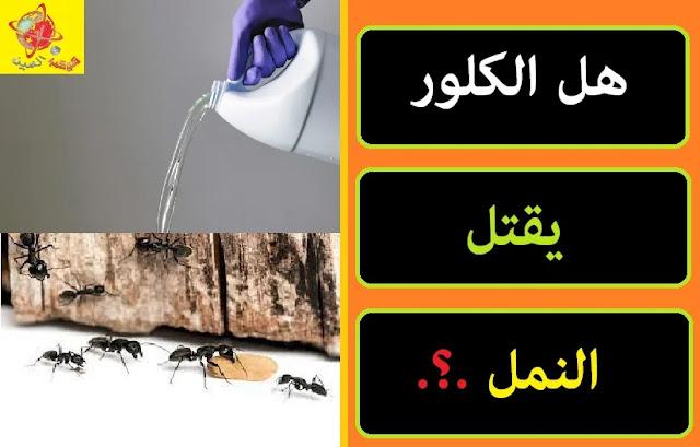 """""""هل الكلور يقتل النمل"""" """"هل الكلور يقتل النمل الأبيض"""" """"هل الكلور يقتل النمل"""" """"هل الكلور يقضي على النمل"""" """"هل الكلور يقتل الحشرات"""" """"الكلور للنمل"""" """"الكلور والنمل"""" """"هل الفنيك يقتل النمل"""" """"هل الكحول يقتل النمل"""""""