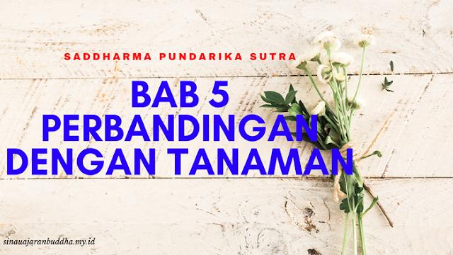 Saddharma Pundarika Sutra - BAB 5 Perbandingan Dengan Tanaman