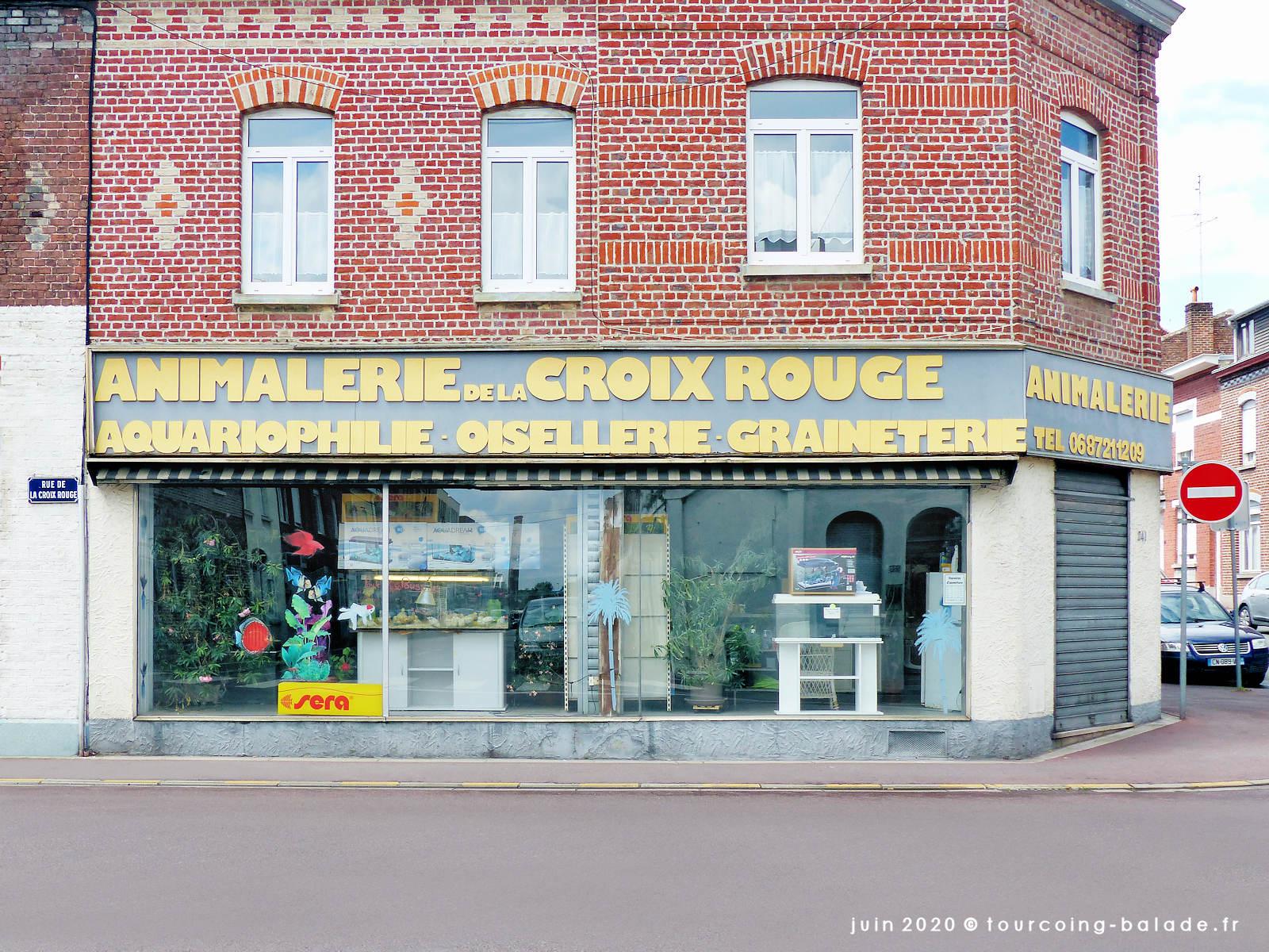 Vitrine de l'Animalerie de la Croix Rouge, Tourcoing 2020