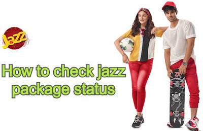 how to check jazz package status