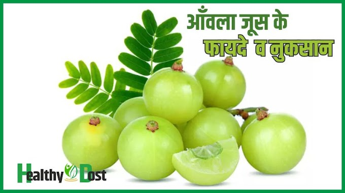 आँवला जूस के फायदे  व नुकसान - Amla Juice Benefits  और  Fayde in Hindi 2021 - Healthy Dost