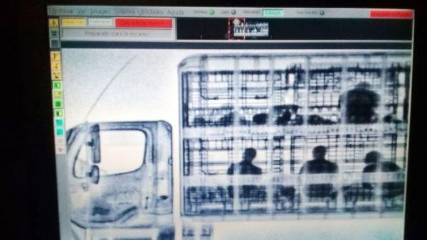 México detiene a 51 indocumentados centroamericanos