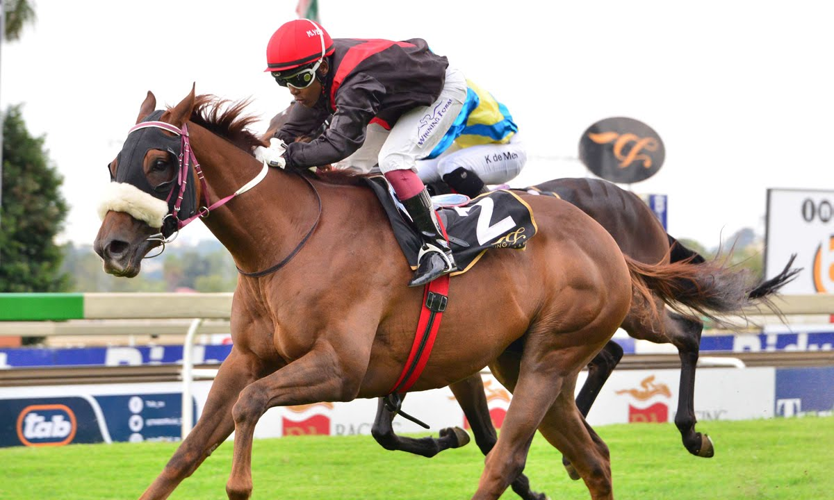 Coral Fever - Horse Racing - Robbie Sage - Running in the 2018 Vodacom Durban July - Bred by Ascot Stud
