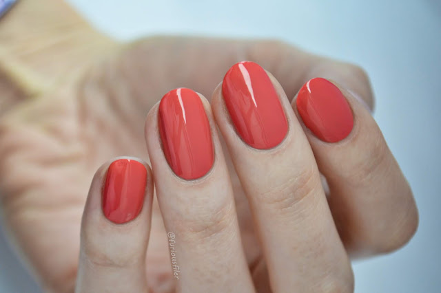 leighton denny wanderlust private beach swatch coral furious filer