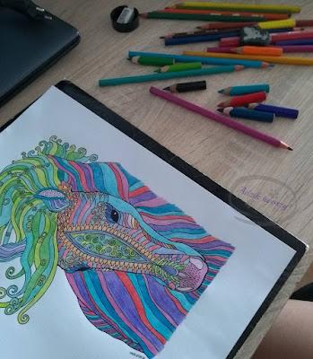 Kolorowanki dla dorosłych jak wykorzystać w projektach handmade pomysły - Adzik tworzy