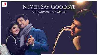 Never Say Goodbye Lyrics in Hindi