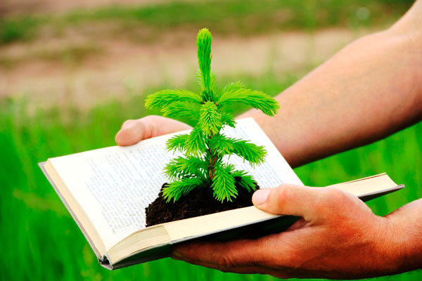 educación, sensibilizacion y conciencia ambiental