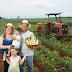 AGRICULTURA FAMILIAR É DESTAQUE NO SEGUNDO DIA DA SEMANA DE CIÊNCIA E TECNOLOGIA