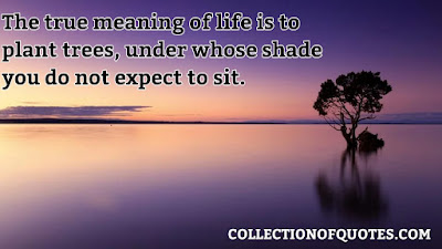 beautiful quotes on life with images free download