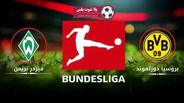 موعد مباراة بروسيا وفيردر بريمن الجوله التاسعة والعشرون الدوري الالماني