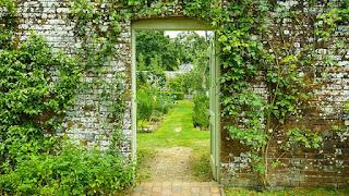 A Year in an English Garden: Flicker & Pulse