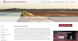 Milestone Cranberry Bog with Ranger Allen Reinhard