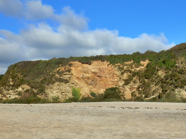 Cliffs at Carlyon Bay, Cornwall