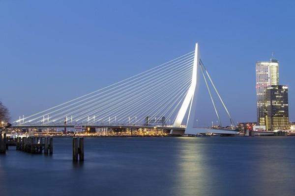 Rotterdam as a Port City