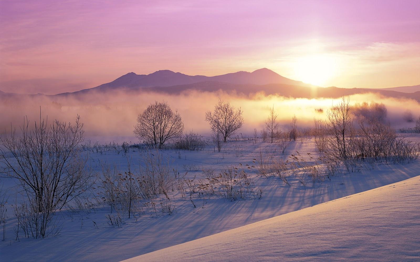 Winterlandschap Met Heuvels