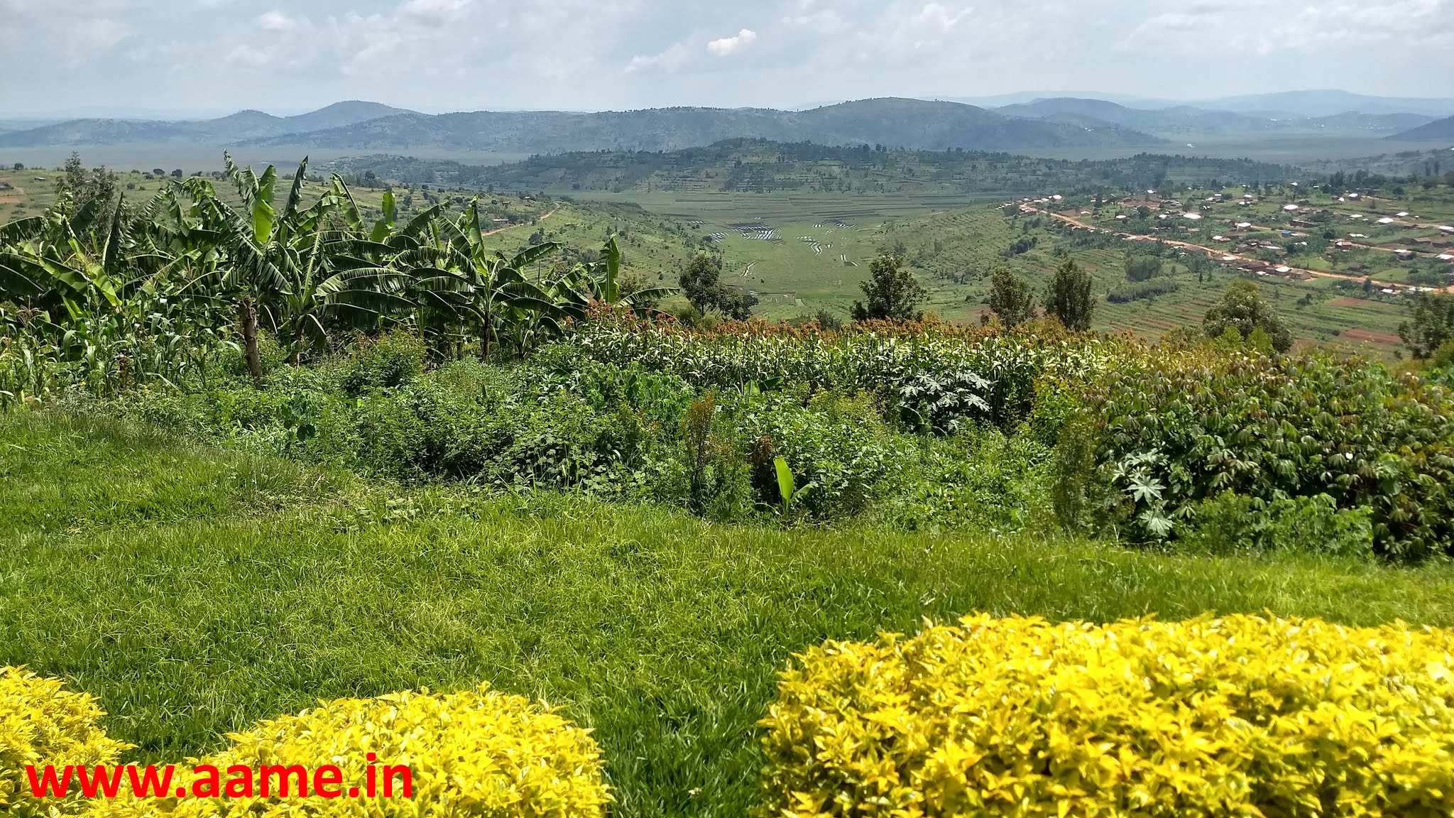 Rwanda - Landscape - 05