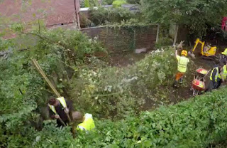 Contractors clear the area and put up new fencing