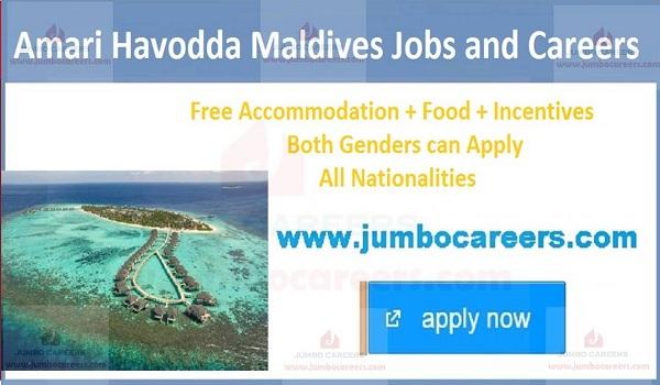 Maldive job vacancies with salary,