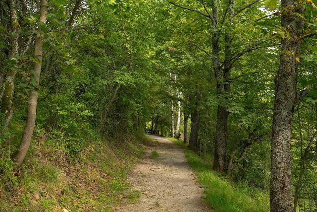Lokaler Panoramaweg Bad Mergentheim | Wandern Liebliches Taubertal 04