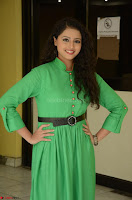 Geethanjali in Green Dress at Mixture Potlam Movie Pressmeet March 2017 080.JPG