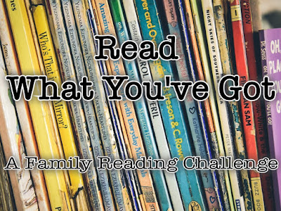 Book Challenge: Read What You've Got