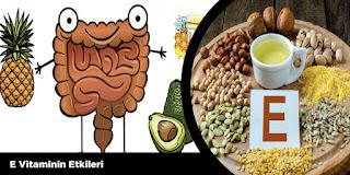E Vitaminin Etkileri