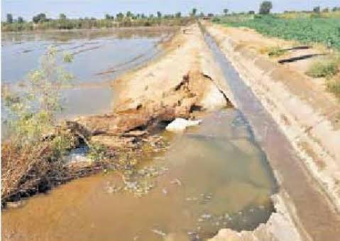 Damage to agriculture due to irrigation of land Its causes and prevention