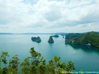 Ekowisata di Raja Ampat