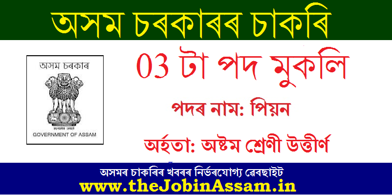 Chief Judicial Magistrate, Lakhimpur Recruitment 2020 : Apply For 03 Peon Posts
