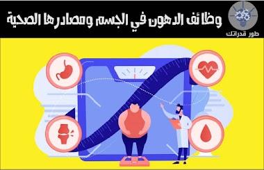 وظائف الدهون في الجسم ومصادرها الصحية