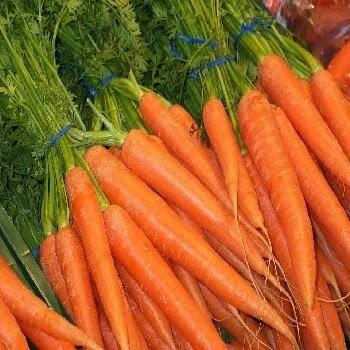 गाजर, carrot vegetables name in Marathi