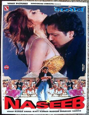 Poster Of Naseeb 1997 Hindi 400MB DVDRip 480p ESubs Free Download Watch Online