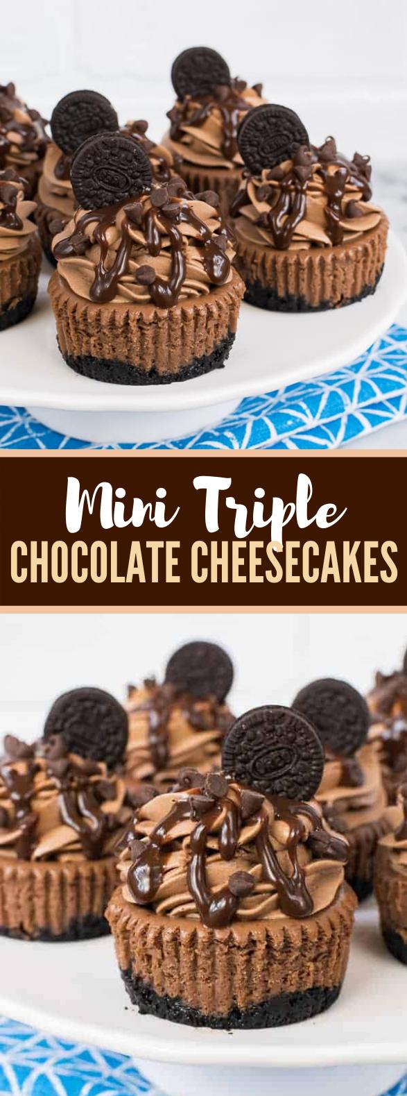 MINI TRIPLE CHOCOLATE CHEESECAKES #desserts #cake
