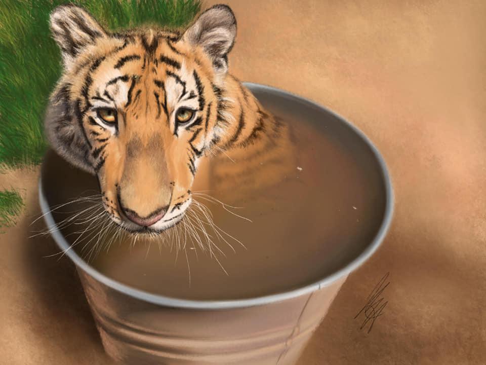 tiger - iPad and Procreate - art by Krista Buynak - BlogFanArt