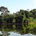 """GOVERNO DO PARÁ CRIA O """"FUNDO DA AMAZÔNIA ORIENTAL"""" PARA O DESENVOLVIMENTO SUSTENTÁVEL DA REGIÃO"""
