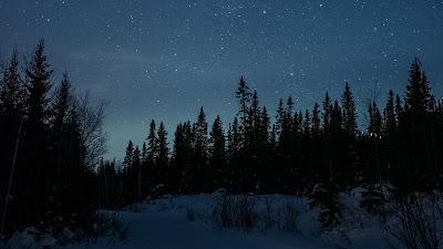 HD Wallpaper Night, Forest, Winter, Road, Snow, Stars