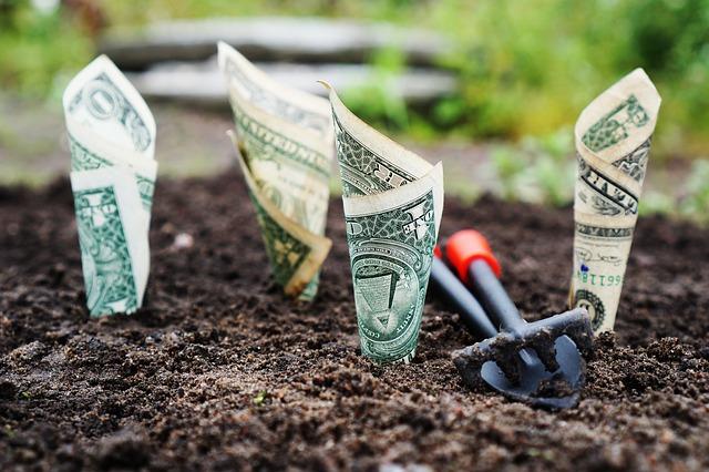 Blog Sebagai Investasi Jangka Panjang Bukan Cara Cepat Untuk Kaya